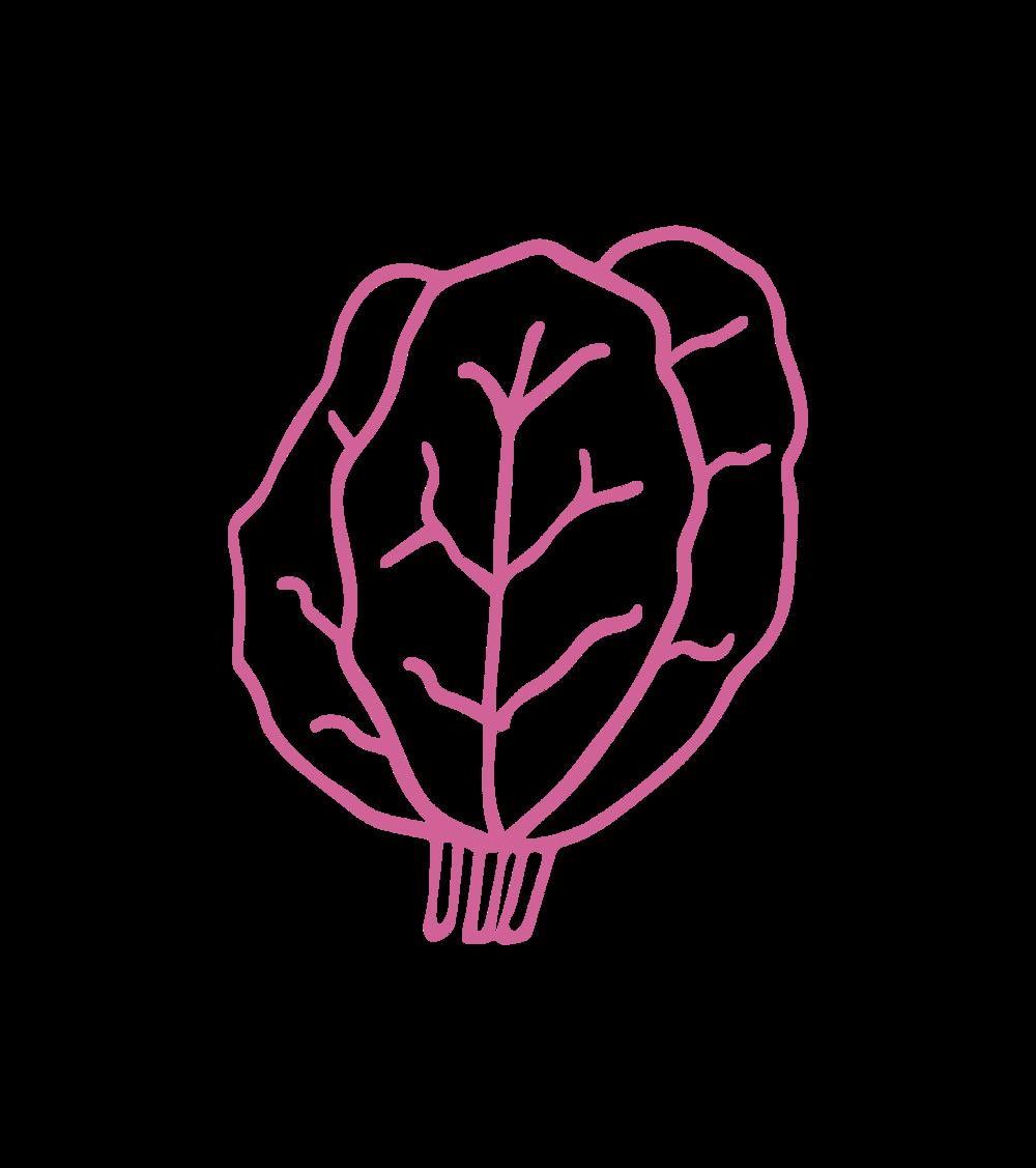 logo (61).png