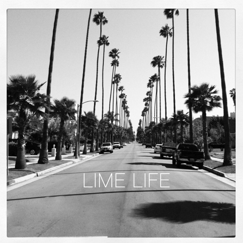 Lime Life - Cover Art (Sized) 1.png