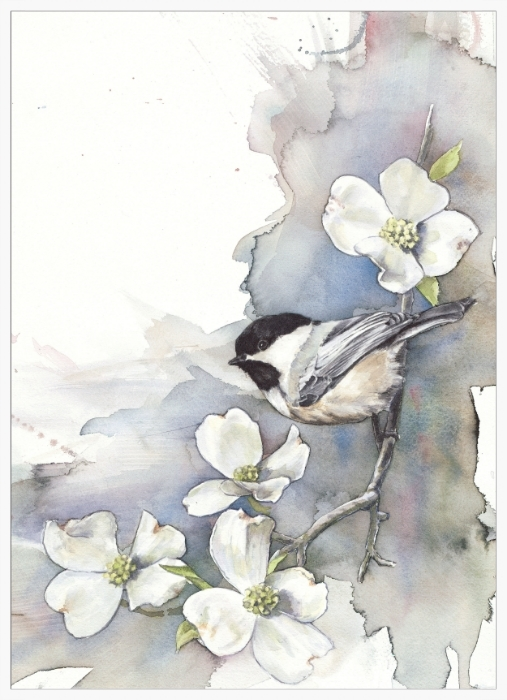 Chickadee on Dogwood