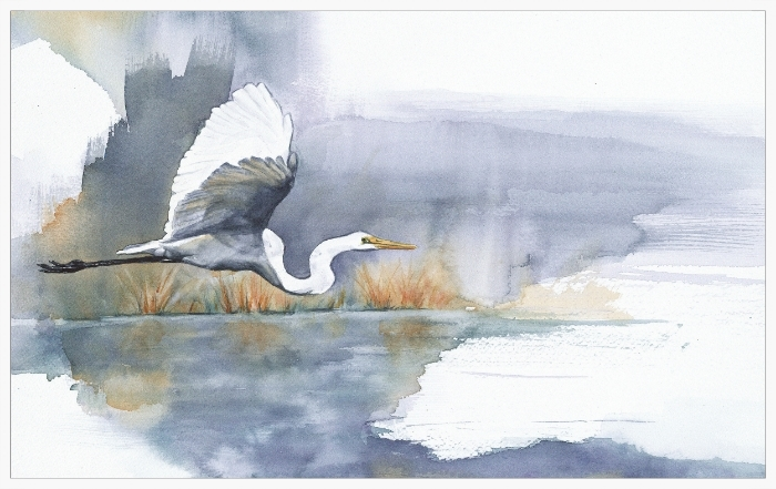 Egret Morning