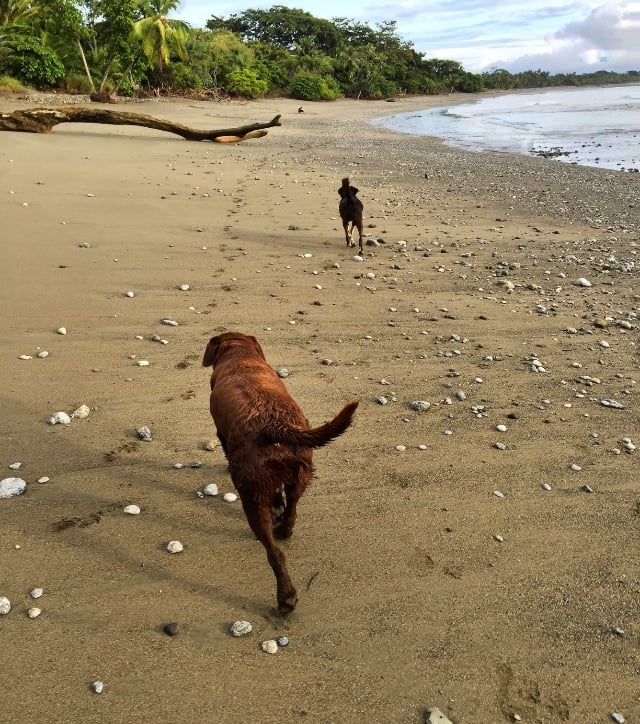 Pete & Rama at Blue Osa beach