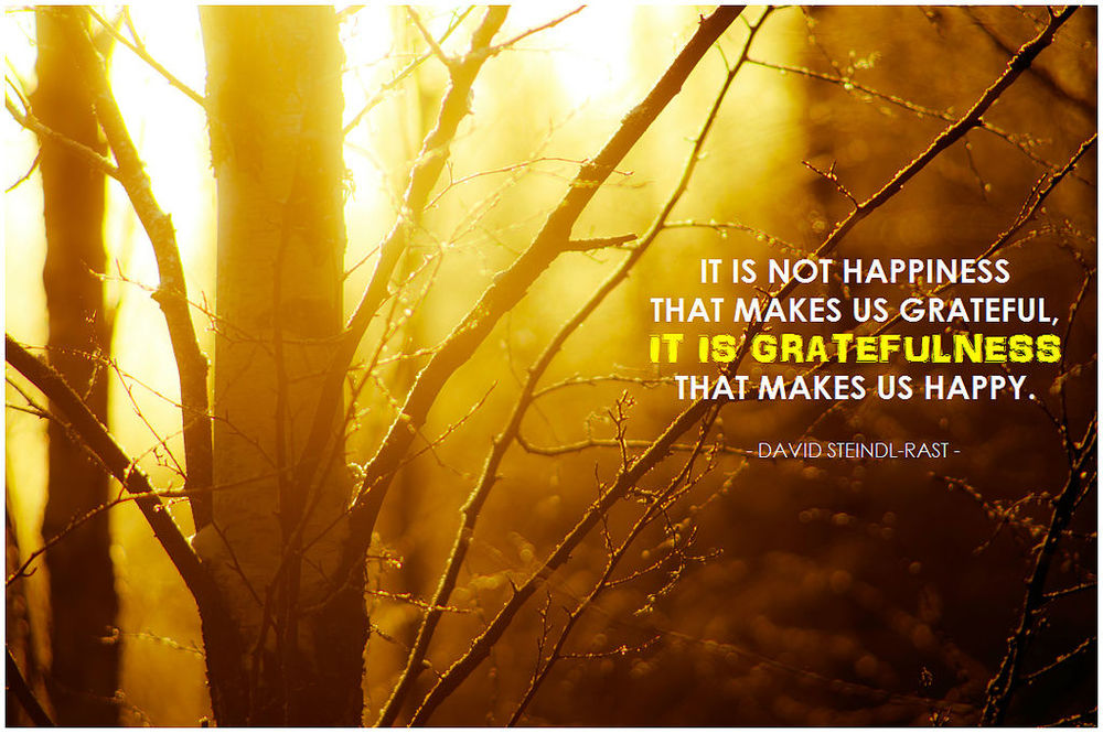 gratitude quote depression hack