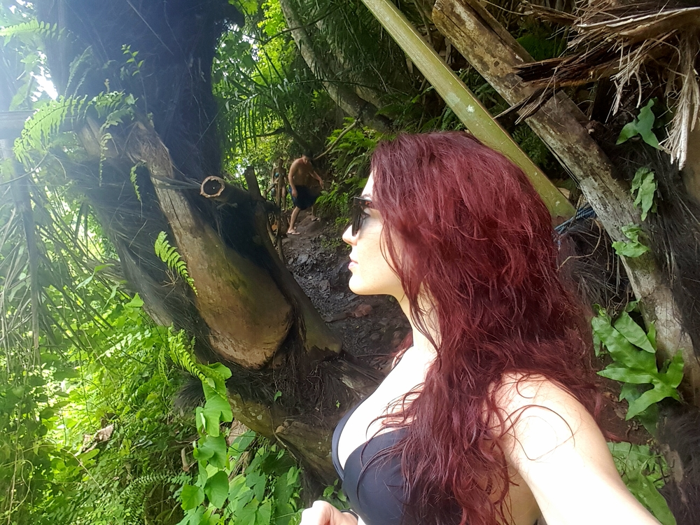 jungle hike.jpg