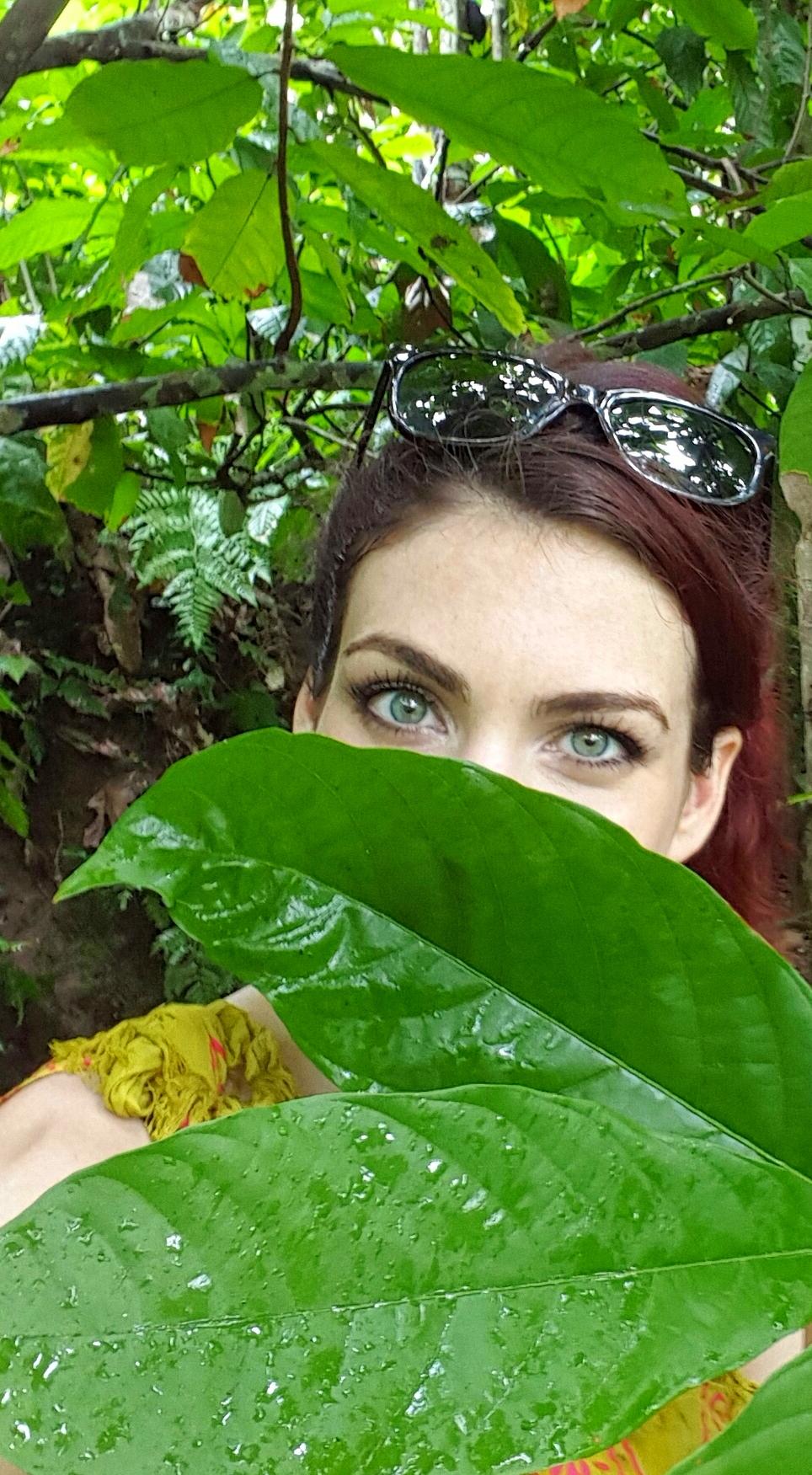 hidden jungle.jpg