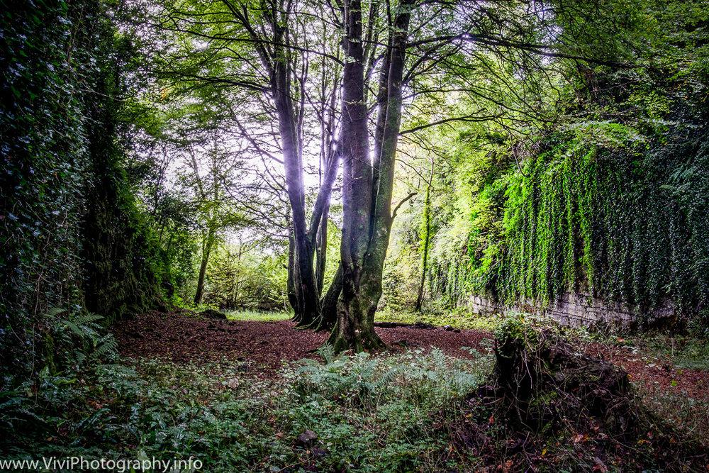 Ireland-113.jpg