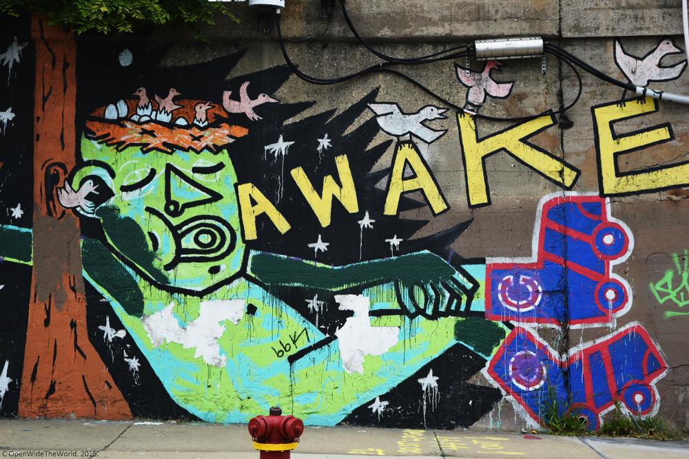 pilsen street art 1.jpg