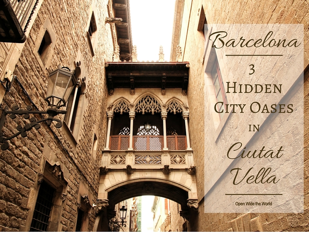Barcelona's Ciutat Vella. So much beauty and history in one charming city. But Medieval over-construction means narrow streets with few trees and even fewer benches. Throw in millions of tourists and thousands of selfie sticks, and finding a moment of peace becomes top priority.