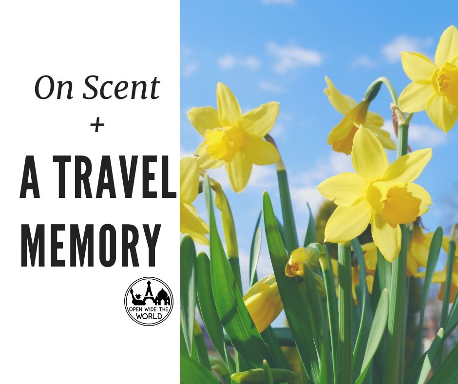 scent-travel-reflection-from-open-wide-the-world.jpg