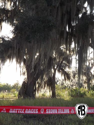 Battle of New Orleans 2016-54-2.jpg