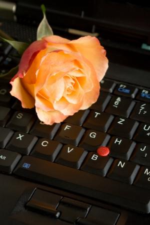 rosethx.jpg