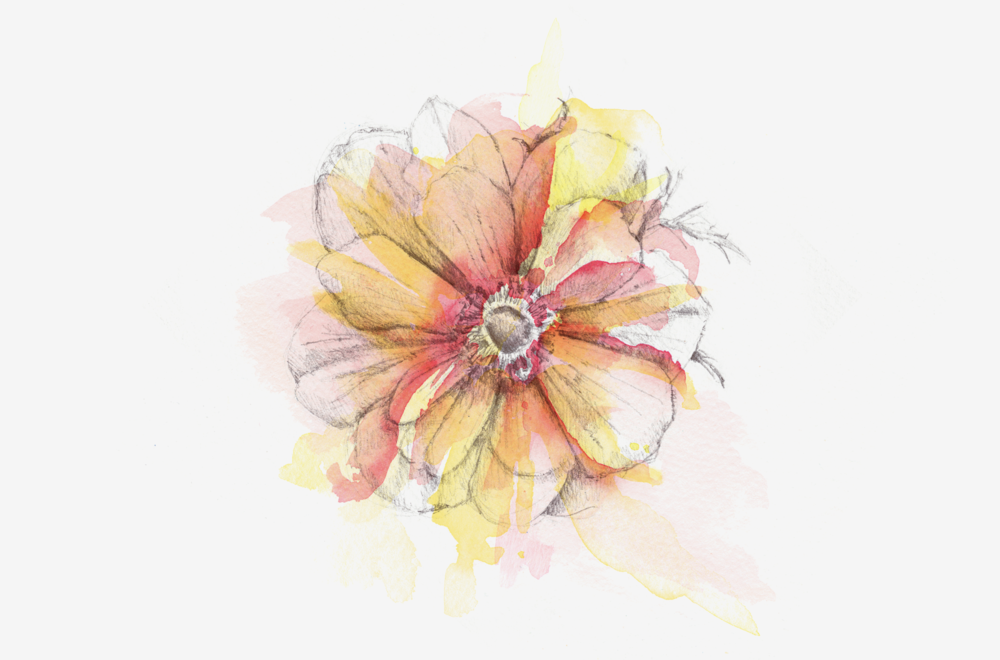 flower-paint-gallery.png