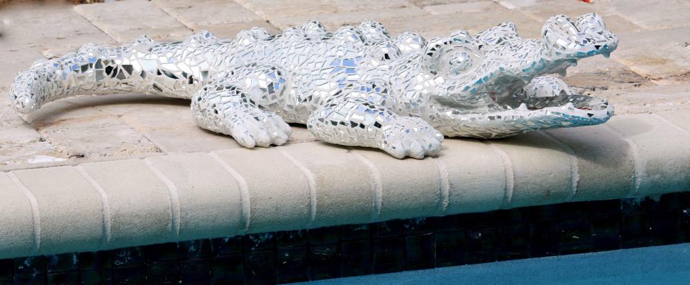 Gator by pool 2-3-09.jpg