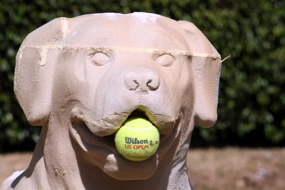 big dog with wilson us open tennis ball-head.jpg