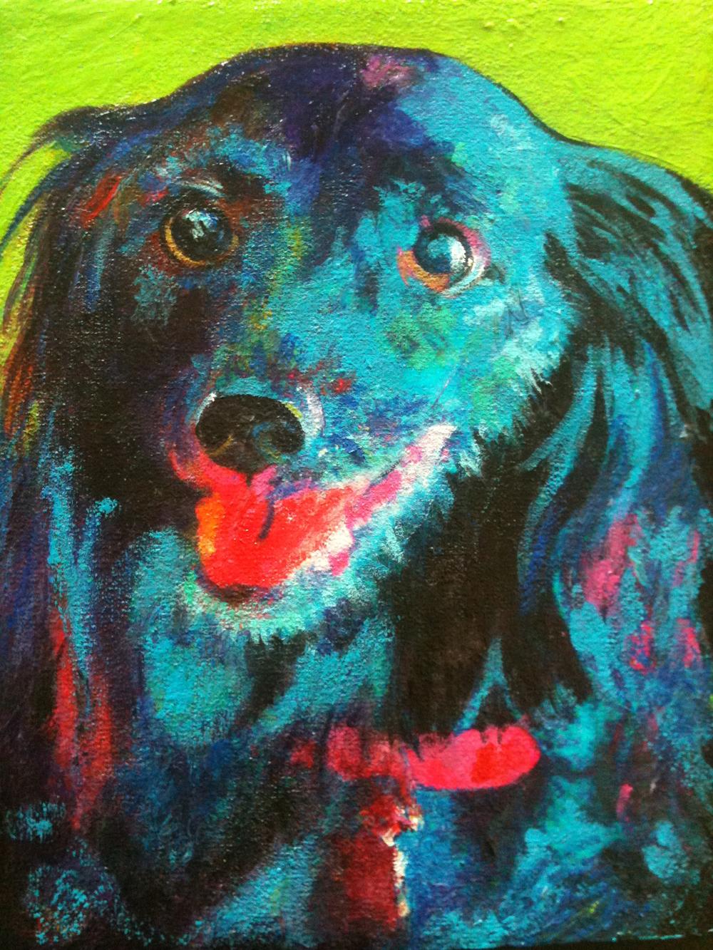 quito dog portrait lg file.jpg