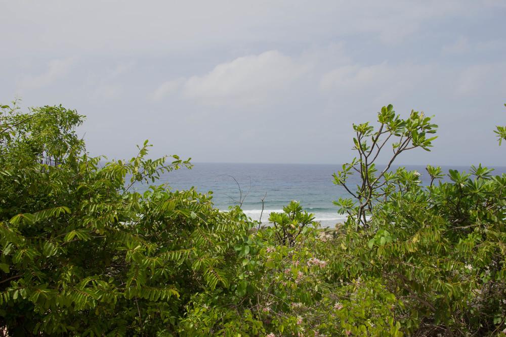 le soleil d'or, cayman brac, grand cayman islands, caribbean islands, vacation, farm, fresh, organic