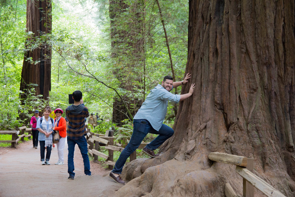 what to wear in san francisco, what to pack for california, striped tunic, black sweater, jeans, brown seychelles waypoint booties, sightglass coffee, warby parker glasses. muir woods, california redwoods, redwood forest