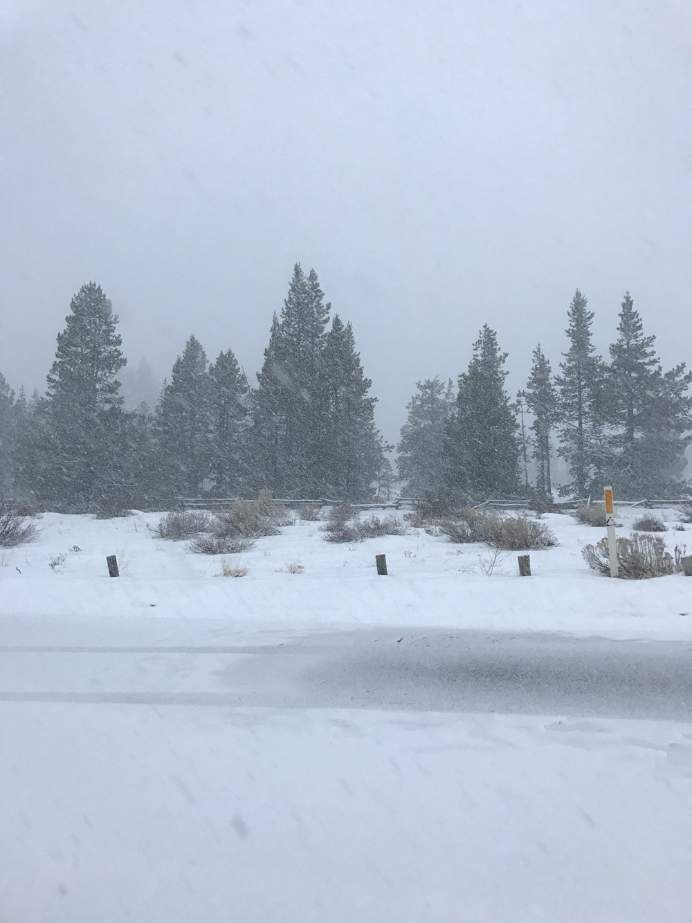 lake tahoe travel guide, south lake tahoe, what to do in lake tahoe, visit california,  puffer jacket, lake tahoe snow