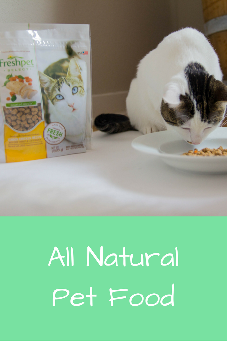 freshpet, all natural pet food, cat, cat food, meow, what to feed your cat