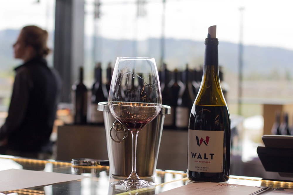 hall wines, walt pinot noir, tips for wine  tasting in napa valley, sonoma, napa, visit california, wine tasting tips, san francisco, oakland,