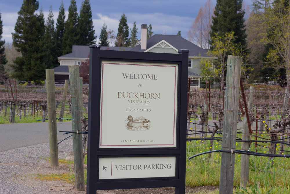 duckhorn, tips for wine  tasting in napa valley, sonoma, napa, visit california, wine tasting tips, san francisco, oakland,