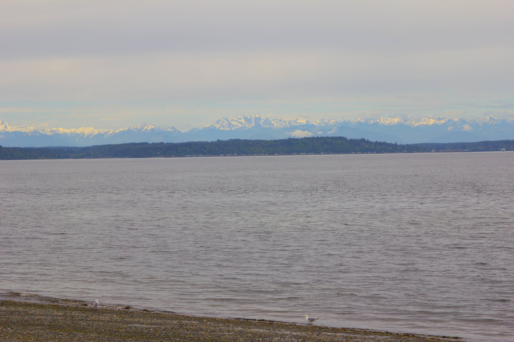 where to get the best view of seattle, alki beach, washington mountains, beach in seattle, city view