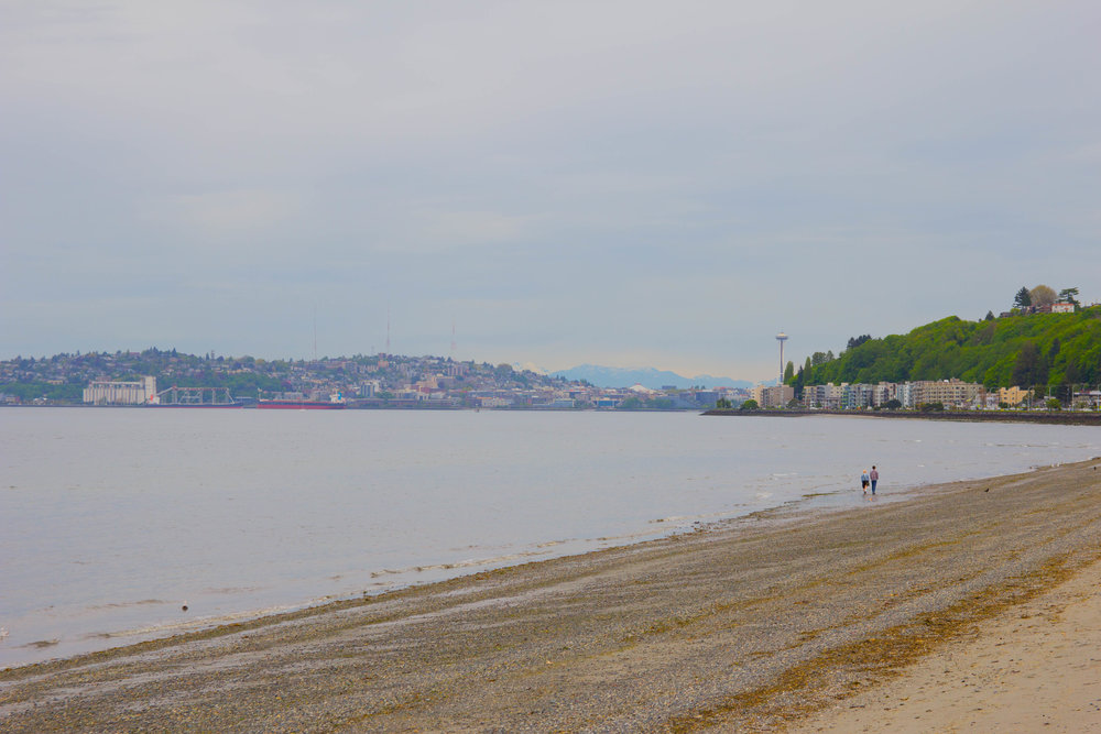 where to get the best view of seattle, alki beach, washington mountains, beach in seattle, city view, eat well, work hard, love truly, travel often