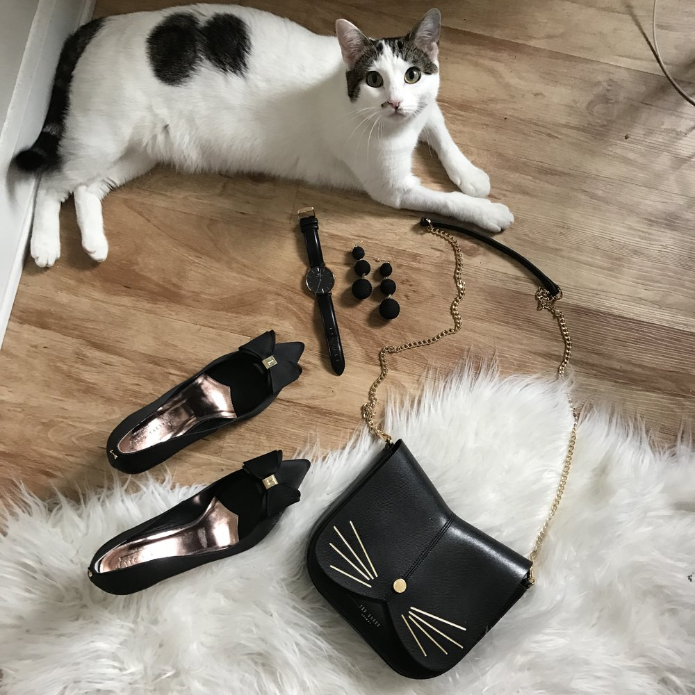 how much does a cat actually cost, cat adoption tips, kitten adoption checklist, how to adopt a cat, dallas pets alive, ted baker bow heels, ted baker cat purse, baublebar crispin earrings, daniel wellington classic black watch