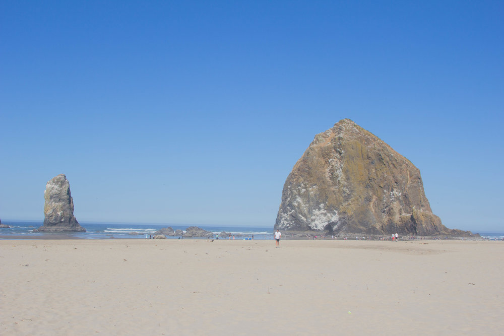 travel guide what to do in the willamette valley, salem, oregon, cannon beach, haystack rock, needles and the haystack