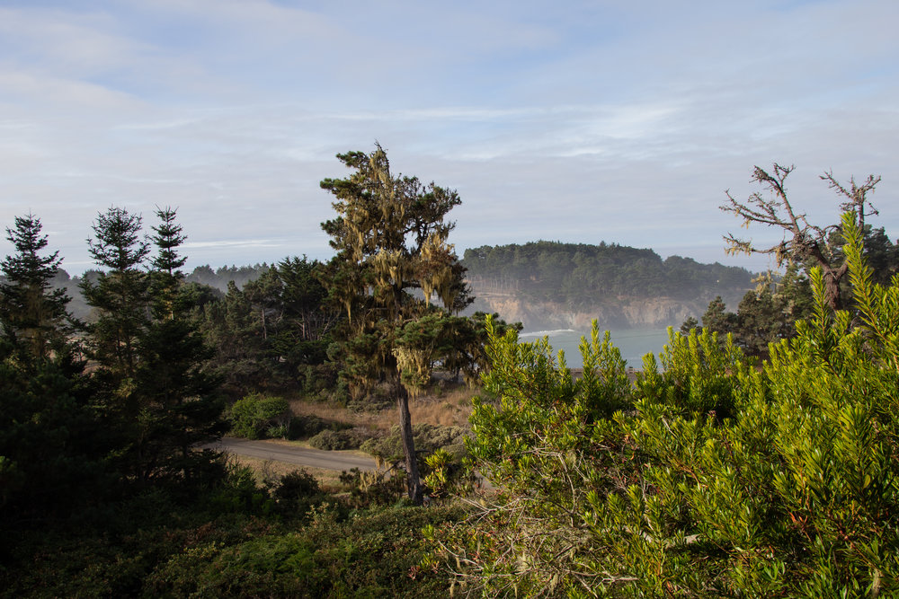where to stay in mendocino, brewery gulch inn, bnb, romantic places to stay in mendo, central coast roadtrip, visit california,