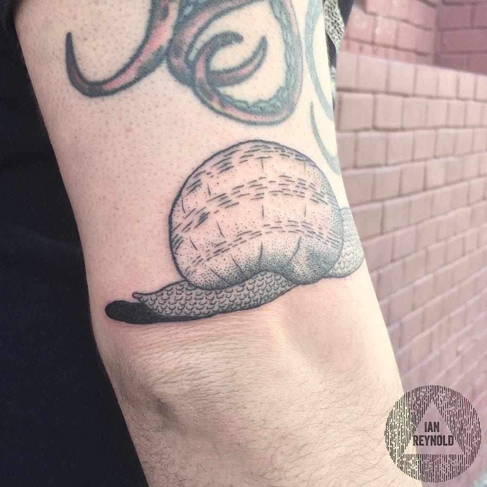 Snail Butt