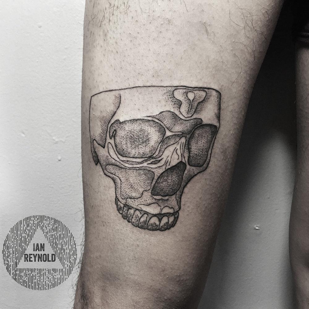 Dotty skull