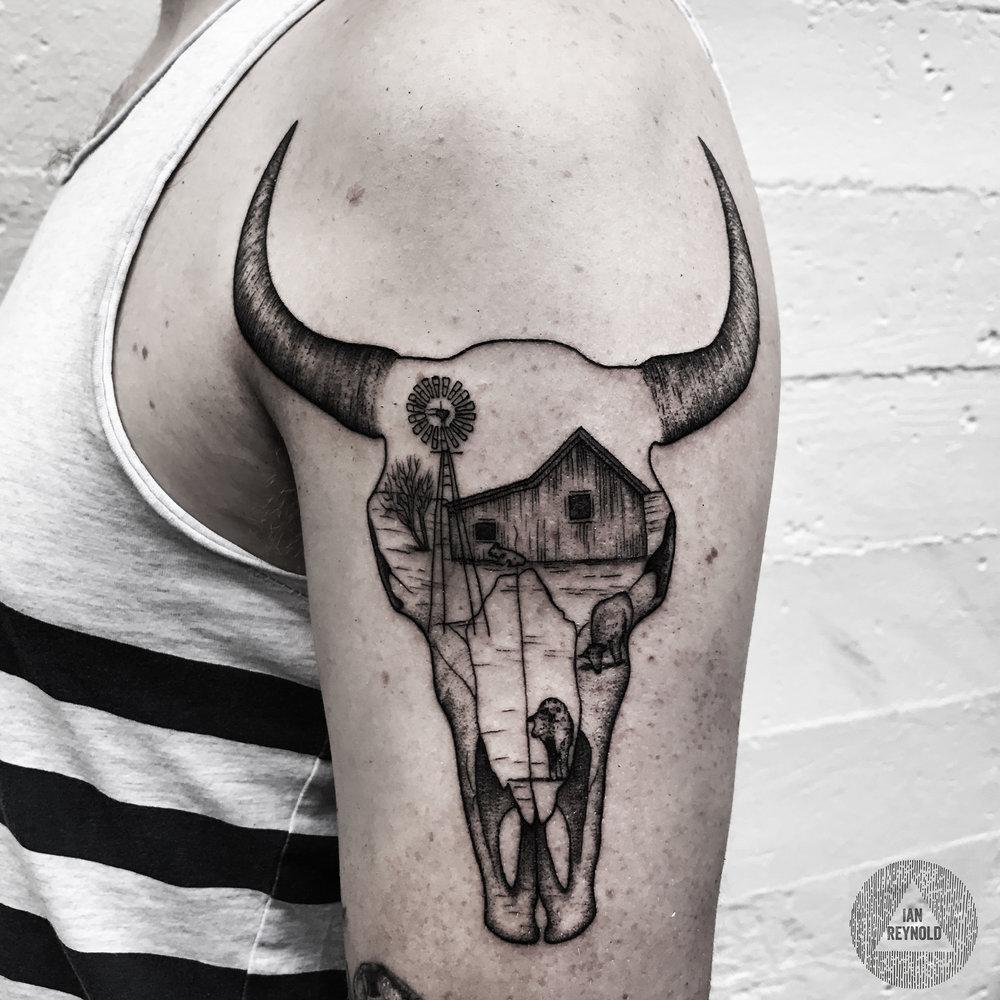cow skull scene