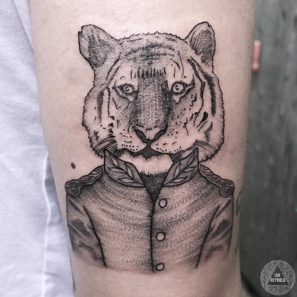 Tiger Sir!