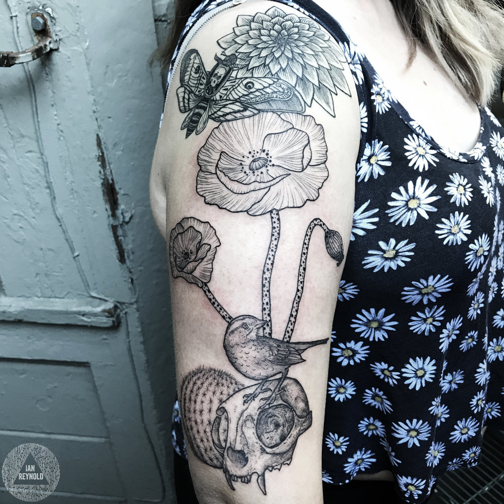 poppies - kitty skull - cactus - birdie
