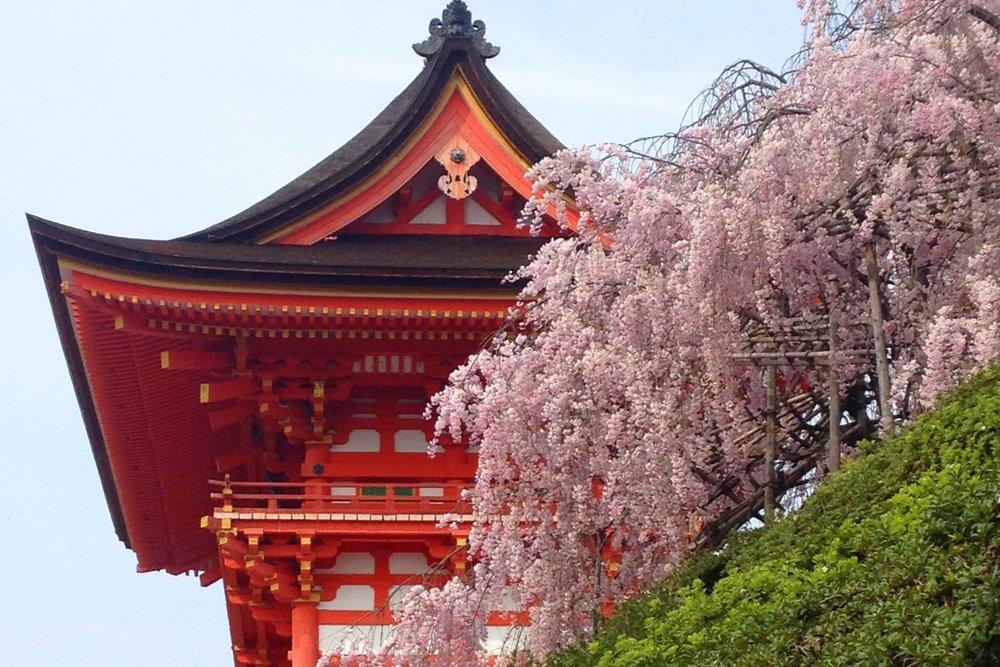 KYOTO - MARCH 24-26