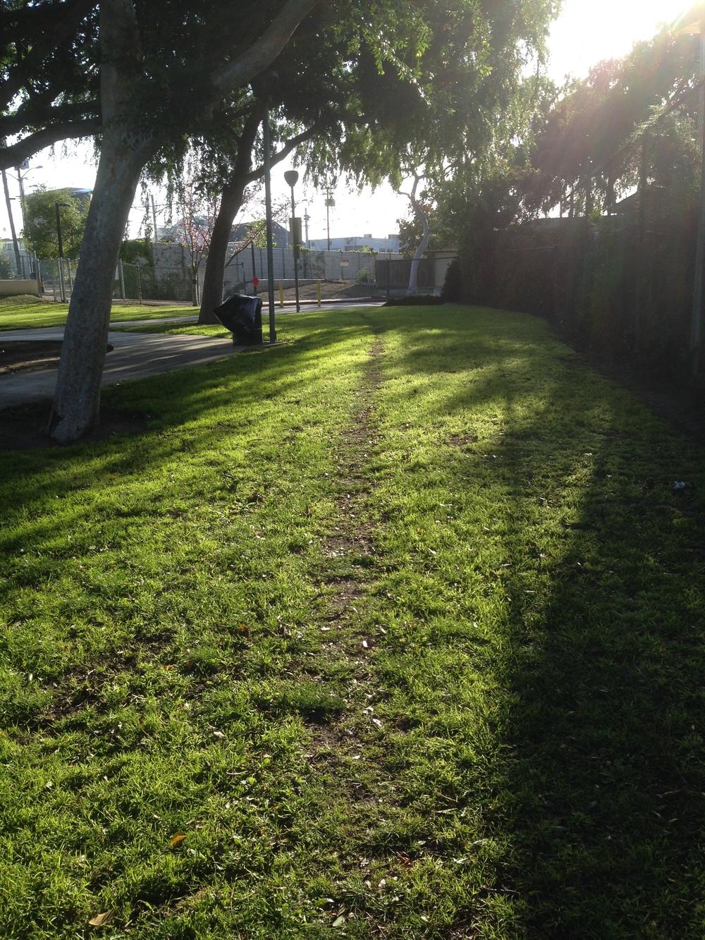 Park Path.JPG