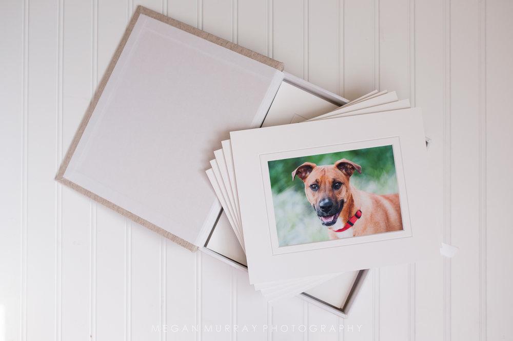 houston fine art pet photographer album