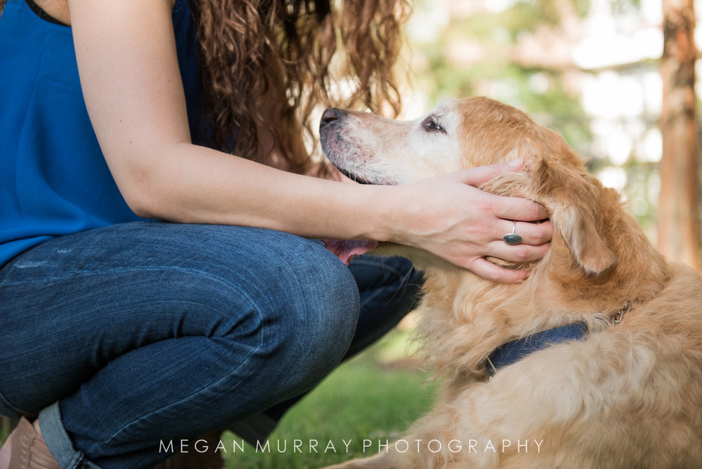 golden retriever with owner in houston memorial park