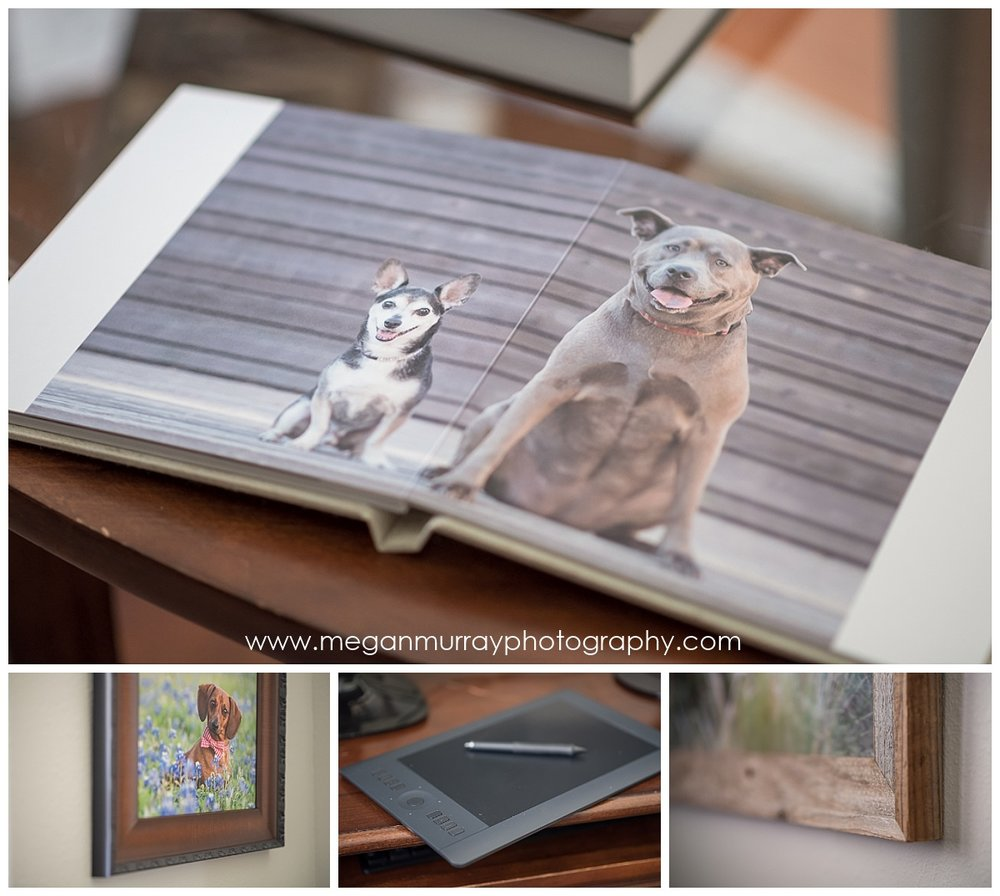 photo album and wall portrait samples