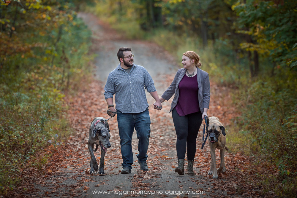 couple walking with big dogs on forest path in fall