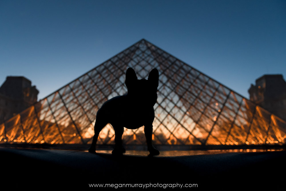 Twilight at Musee du Louvre