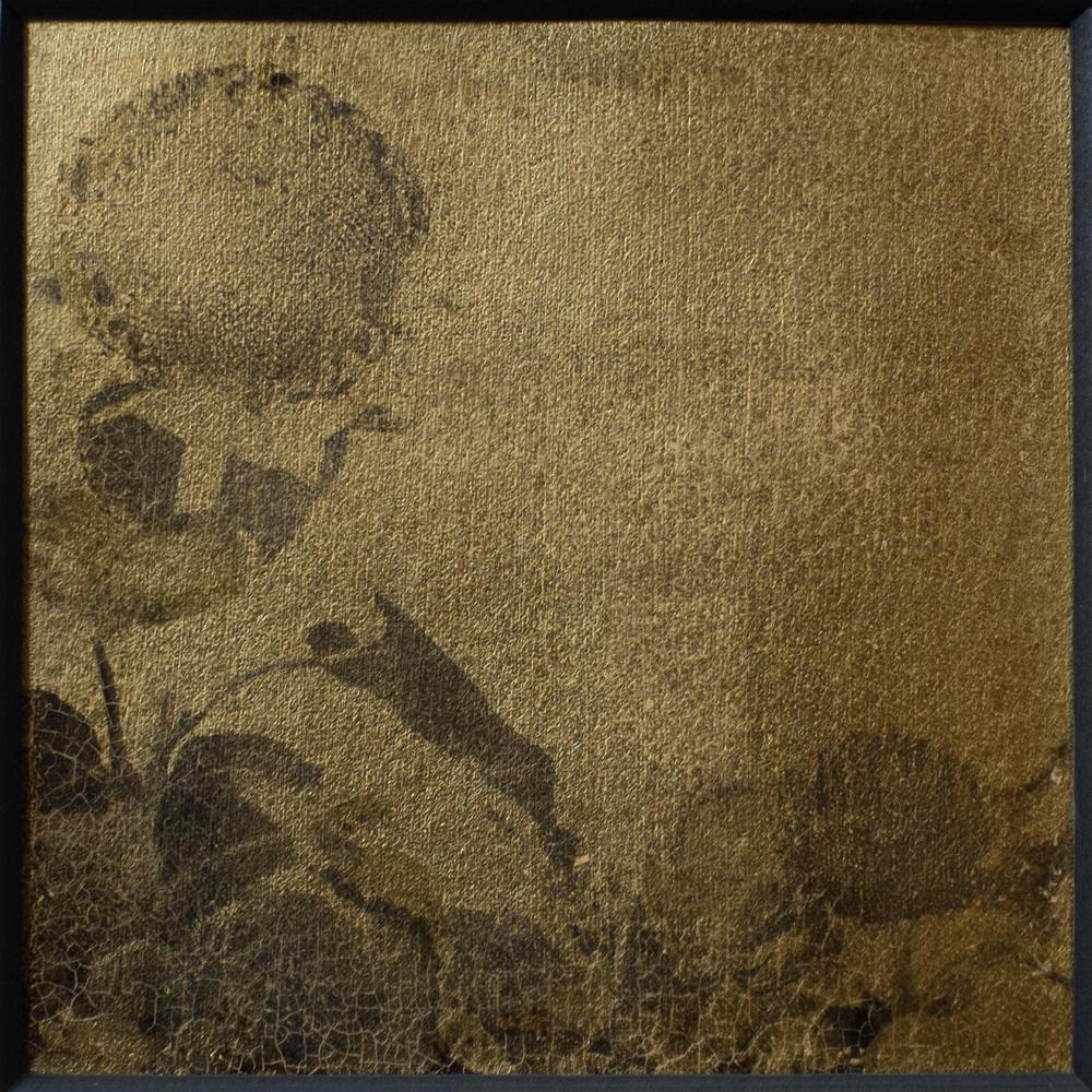 """Sunflower 5 anno 2015 edizione 1/4  Stampa in processo alternativo al Palladio e Gelatina  Misure Misure 12 cm x 12 cm 4.75"""" x 4.75""""  Supporto carta Platine Arches e Foglia d'oro 22 carati  Prezzo di vendita euro 1.200,00"""
