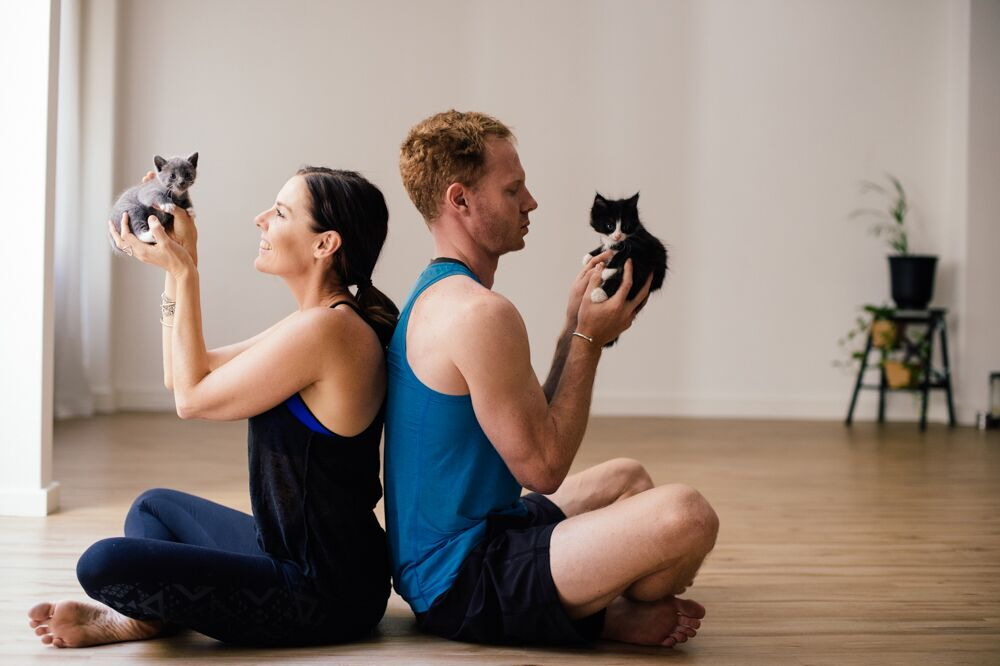 Cat Yoga Sydney Morning Herald