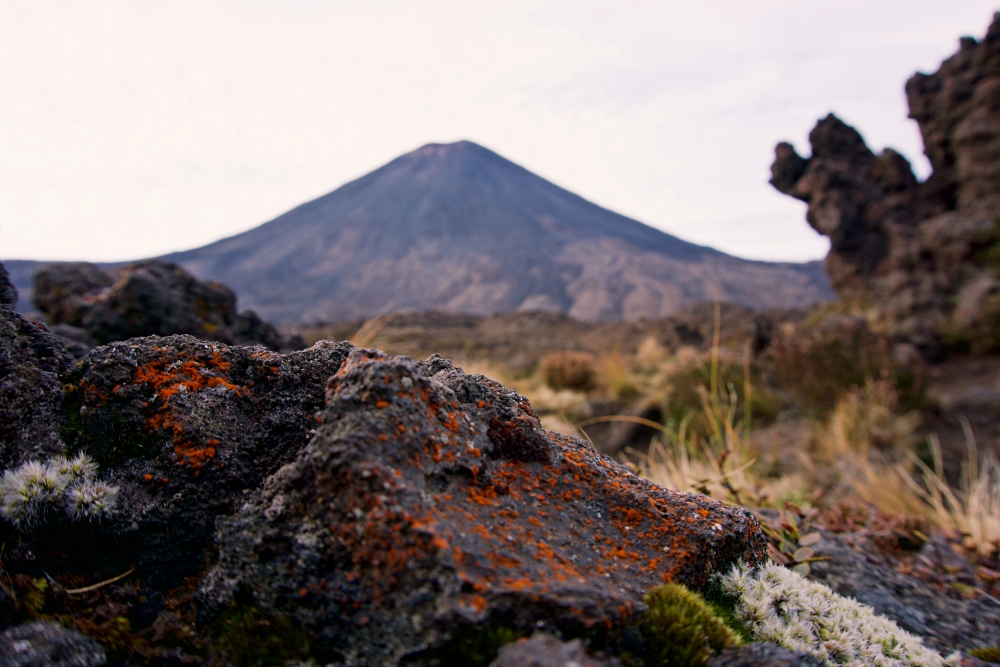 The ant's view of past volcanic activity in the area.