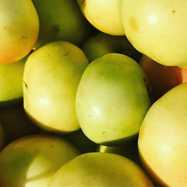 Endel frukt börjar bli övermogen och annan börjar mogna men mycket är inte moget på ett tag trots att det tappar frukt redan nu. Titta så att kärnorna är mörkbruna! 🍏