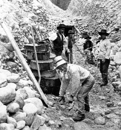 Gold Miners, Kumara