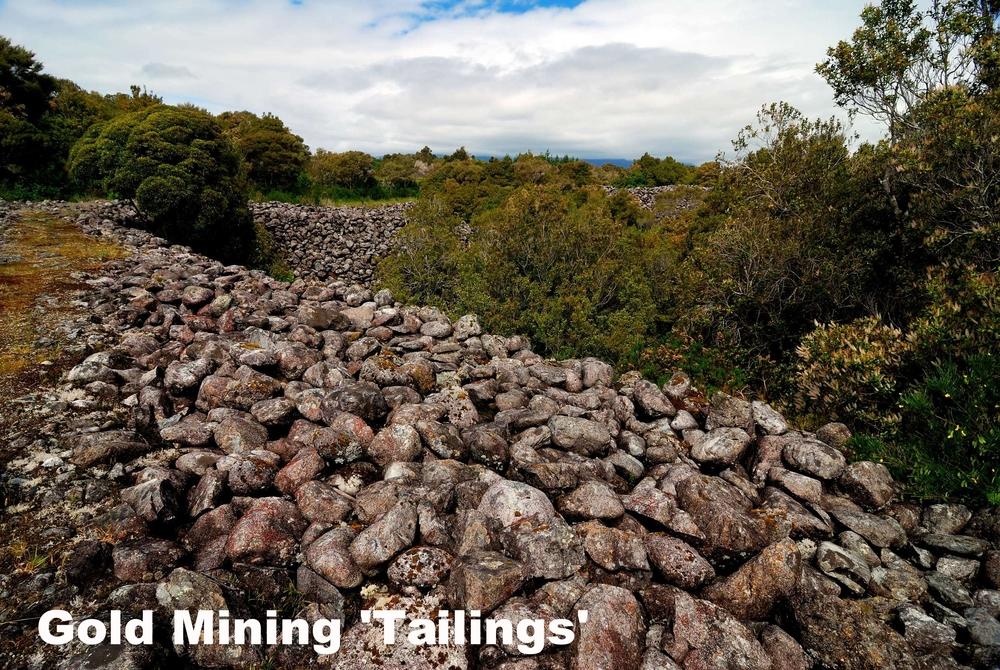 Gold Mining tailings (near Kumara)