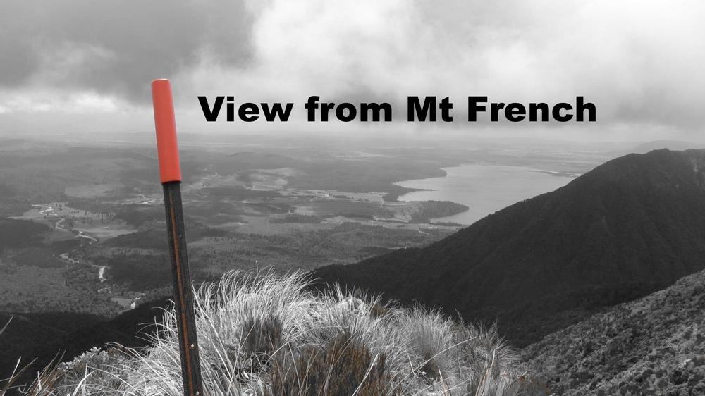 View of Kumara & Lake Brunner from Mount French