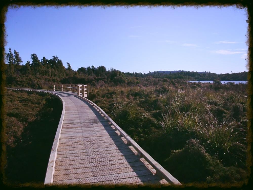 West Coast Wilderness Trail boardwalks (near Kumara)