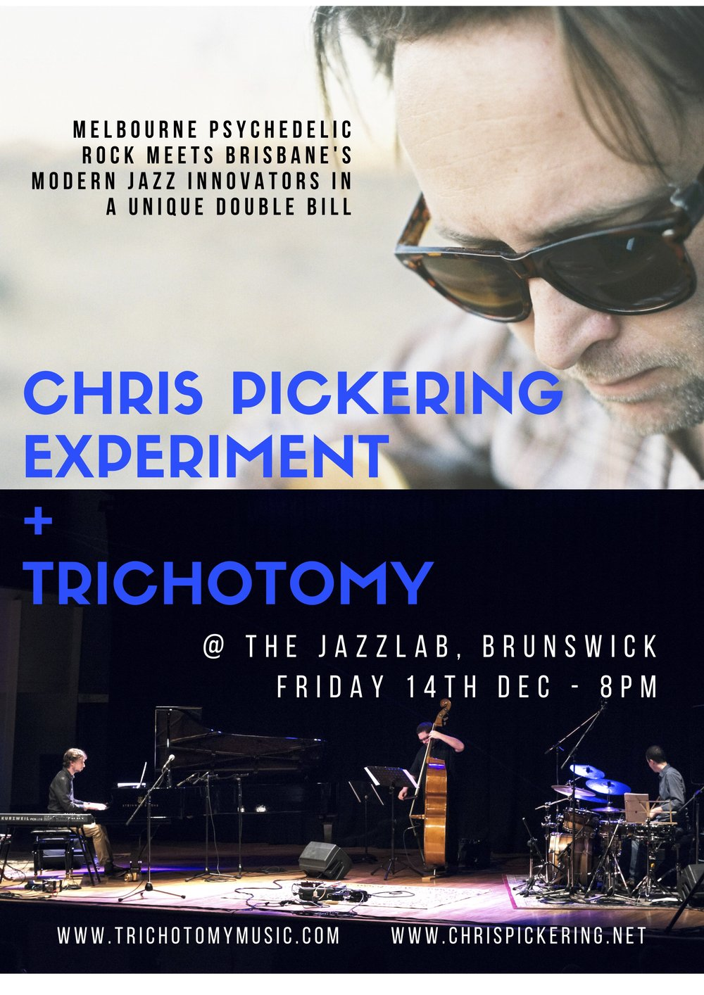 CHRIS PICKERING EXPERIMENT +TRICHOTOMY.jpg